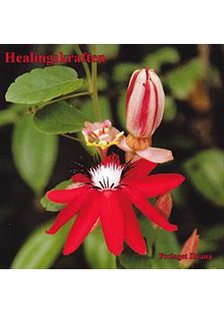 Healingskraften cd